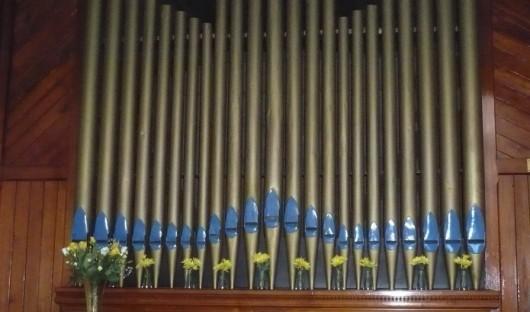 v4HP Organ