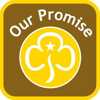 Brownie_PromiseButtons